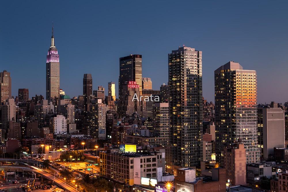 Empire State Building in Purple by Arata