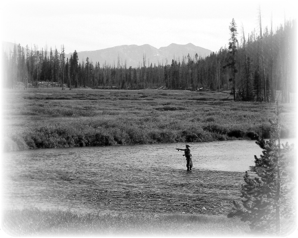 ~ Fly Fishing at Yellowstone National Park ~ by Brion Marcum