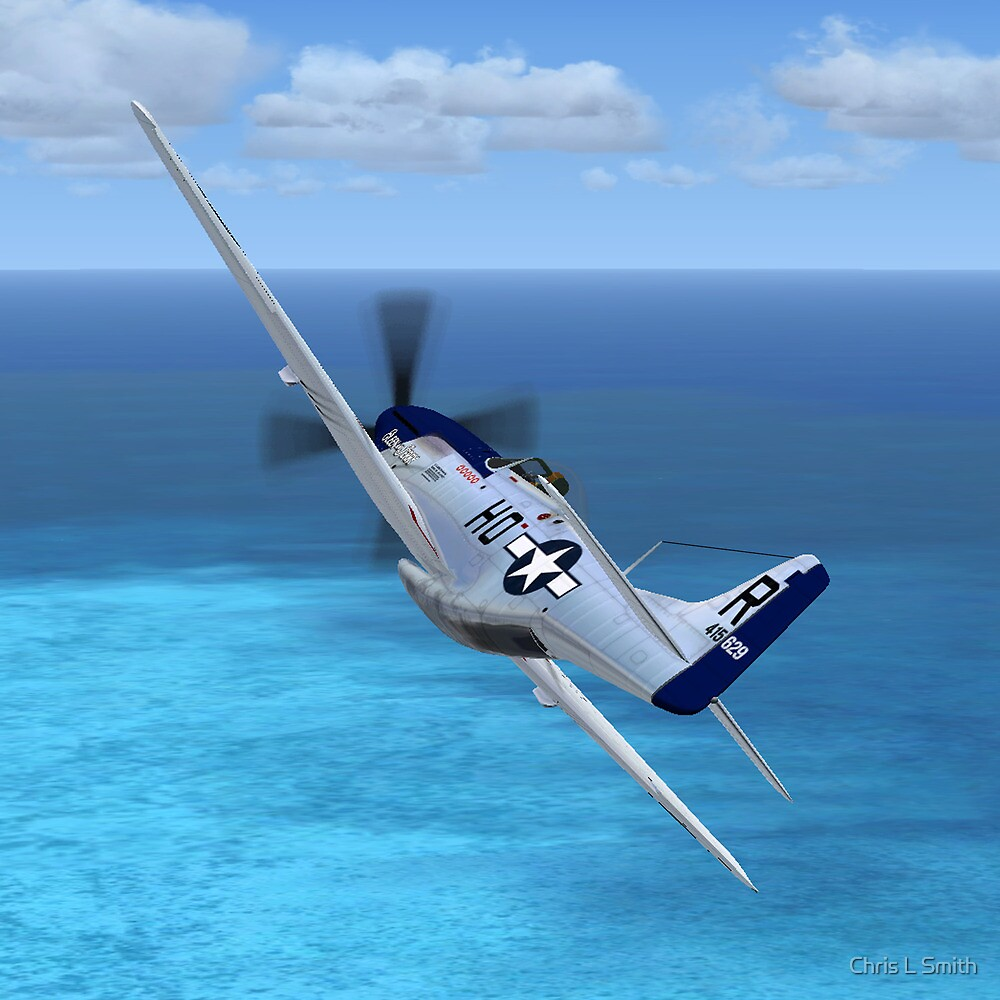 P51 Mustang by Chris L Smith