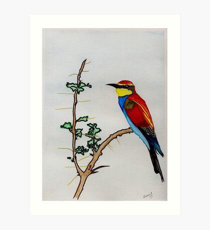 The European Bee-eater Art Print