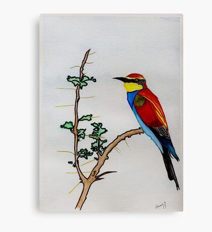 The European Bee-eater Canvas Print