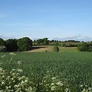 A small slice of Suffolk by KatDoodling