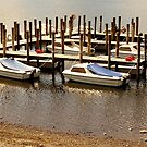 Boats on Derwent Water by Harry Purves