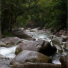 Josephine Creek, FNQ by Chris Cohen