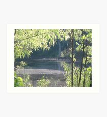 Green and the Pond Art Print