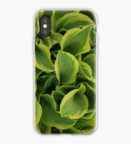 Hosta iPhone Case