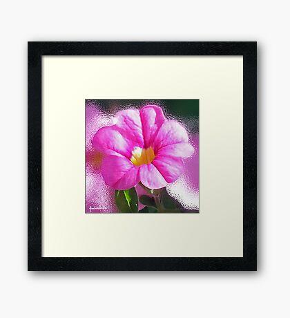 Blissful in pink  Framed Print