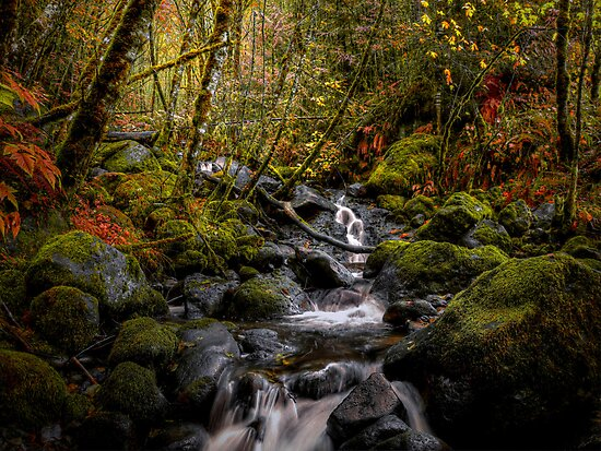 Keep Me In Mind by Charles & Patricia   Harkins ~ Picture Oregon