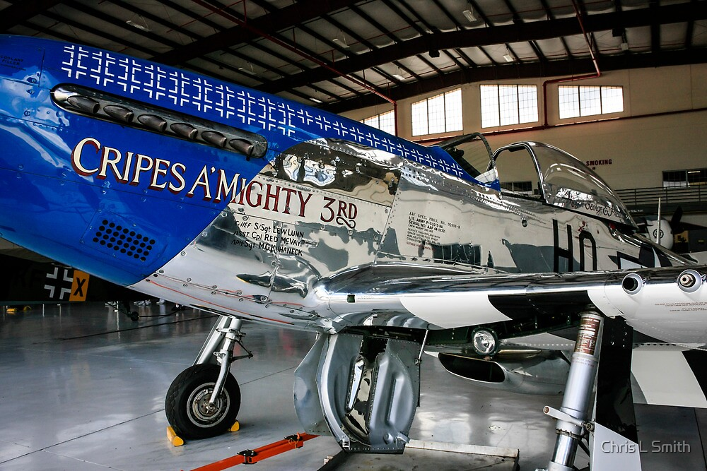 P51 Mustang Fighter plane by Chris L Smith