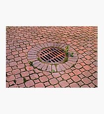 Grate and Pavers Photographic Print