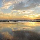 daytona sunrise by dc witmer