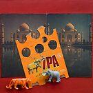 Taj and Tiger by Sue O'Malley