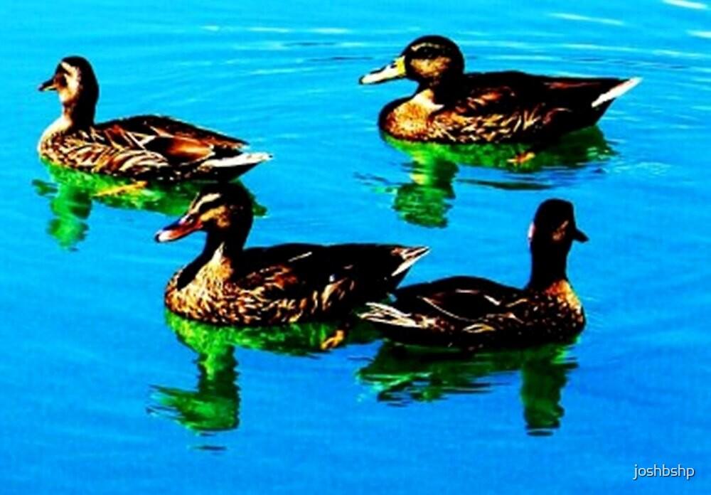 Ducks 1 by joshbshp