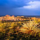 Pawnee Buttes by Reese Ferrier