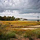 Plymouth Shoreline by Debra Fedchin