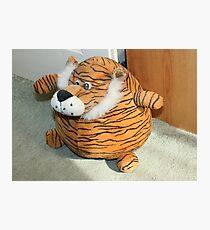 Tiger DoorStop Photographic Print