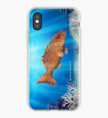 Orange on Blue iPhone Case