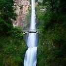 Multnomah Falls by Don Rankin