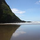 The Pacific Coast of Oregon by Don Rankin