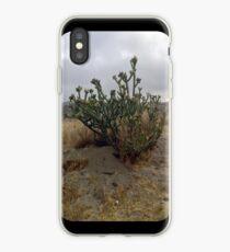 Cactus at Dawn iPhone Case