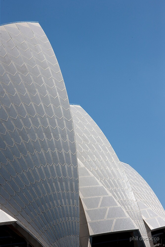 Opera House Shells by phil decocco