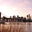 Brooklyn Bridge by atplum