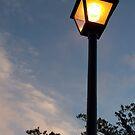 Streetlight by wickedmommicked