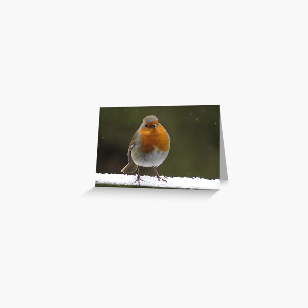 Snowy Christmas Robin Greeting Card