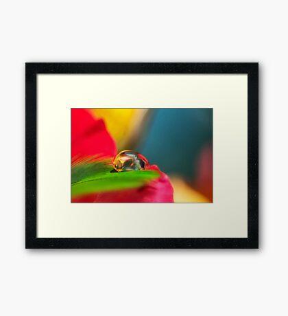 Love Born Framed Print