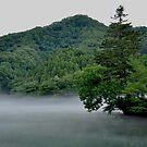Japanese mist by atplum