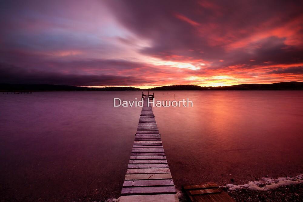 Walk the plank by David Haworth