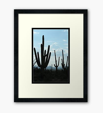 Silent Saguaro Warriors  Framed Print