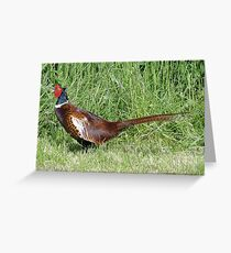 The Pleasant Pheasant Greeting Card