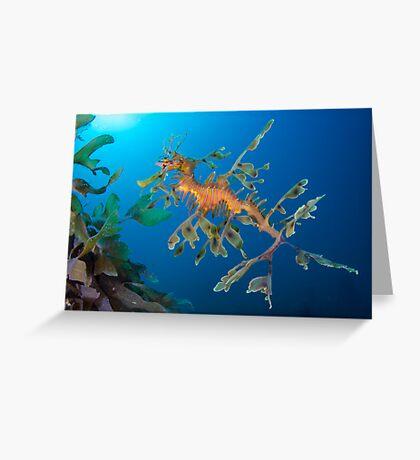 Kelp Creature Greeting Card