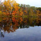 Fall Foliage by naturesangle