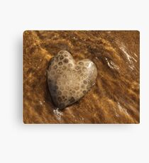 Petoskey Stone Canvas Print