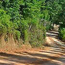 Down The Hill Round The Bend  by PeggySue3