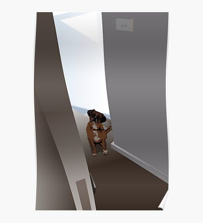 Dog in the doorway who shouldn't be there Poster