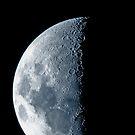 Half Moon by champion