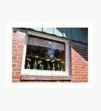 University Place Garden Tour - Home #1 Dancing Gerbera Daisies on a Sill Art Print