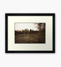 Forgotten but not Gone 2 Framed Print