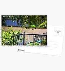 Postales A Corner Of The Garden- Lyme Dorset UK