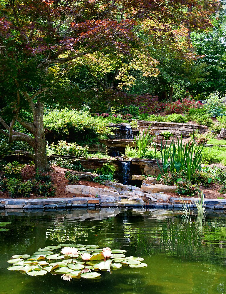 TRANQUIL POND IN A FLOWER GARDEN by vincentphoto