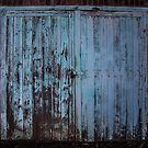 the blue doors by Maree Cardinale