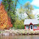 Spring Cottage by Diane Trummer Sullivan