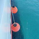 buoy oh buoy by H J Field