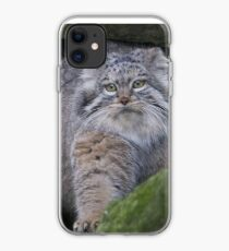 Time for a walk.... iPhone Case