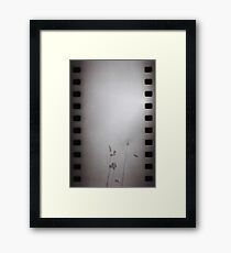 On My Way To Mt. Misery II - Lincoln, MA Framed Print