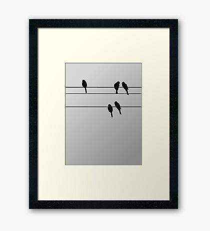 pbbyc - Birds on a Wire Framed Print