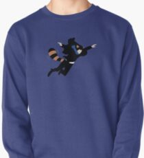 The Reichenbach Raccoon Pullover